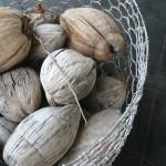03_bakwa_lodge_dry_coconut