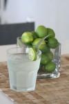 07_bakwa_lodge_lemon_juice