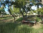 11_bakwa_lodge_the_garden_bench