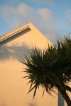 15_bakwa_lodge_sunset_with_bakwa_tree