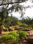 15_bakwa_lodge_the_garden