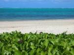 bakwalodge-beach